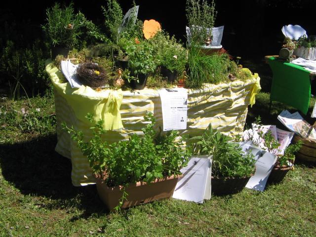 Inars la festa della primavera e il giardino dei semplici - Il giardino dei semplici ...